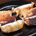 料理メニュー写真黒豚鉄板餃子