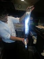 店主が毎日仕入れる新鮮な魚