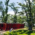『マテラの森』の名前の通り、緑がいっぱいの敷地内には公園もあります。お子様やワンちゃんと遊んだり、食後のお散歩にもぴったりの癒し空間。