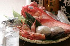 魚魚 八重洲の画像