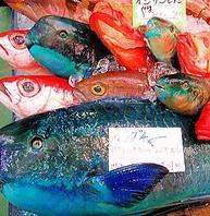 沖縄の魚を食せ!毎日鮮度の良い魚を揃えてます!!
