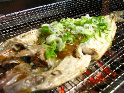 円山公園駅直結!日本最北の離島、礼文島から直送される四季折々の海鮮料理が充実◎