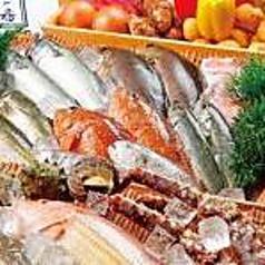 魚一番 博多駅前店の特集写真