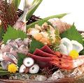 料理メニュー写真日本海波盛り(五種盛り)