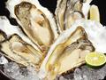 料理メニュー写真「厚岸牡蠣(カキ)漁師直送」 牡蠣(カキ)