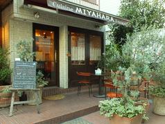 Restaurant MIYAHARAの写真
