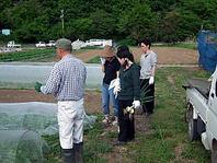 信州、地場野菜へのこだわり