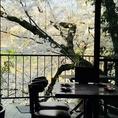 鴨川沿いのロケーション河原町より徒歩3分。鴨川を眺めながらお食事ができるお席もあります。春は桜もおたのしみいただけます。京都散歩の途中に、京都観光に是非お立ち寄りくださいませ。