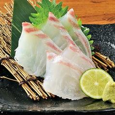 九州直送!季節鮮魚の刺身
