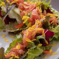 料理メニュー写真グリーンサラダ 高知県産トマトのドレッシング