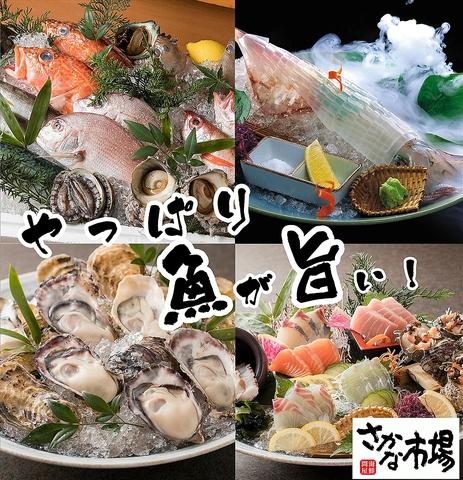 市場を丸ごと味わえる海鮮居酒屋!飲み放題付コース3500円~