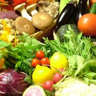 旬の新鮮野菜はもちろん、珍しい野菜たちも豊富にご用意