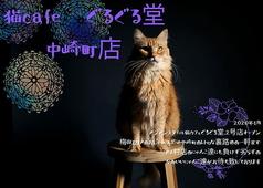 猫カフェぐるぐる堂 中崎町店