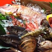 よし寿司 蕨店のおすすめ料理3