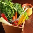 龍星いち押しの「農園バーニャカウダ」!!今回新メニューとして登場☆バーニャカウダとは、「バーニャ=ソース」「カウダ=温かい」という意味。旬のものを直送しているので、とても新鮮!新鮮な野菜をアツアツのソースにつけてお楽しみください。