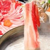 ホルちかのおすすめ料理2