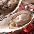 料理メニュー写真北海道仙鳳趾産 炭焼き牡蠣
