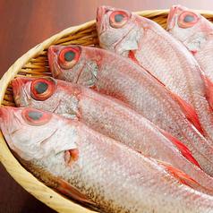 高級魚 のど黒