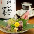 料理メニュー写真鯵 刺身/たたき
