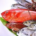 【漁師直送魚介】<豊島>瀬戸内の魚介の宝庫 毎日新鮮な魚介類を直送