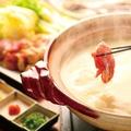 料理メニュー写真比内地鶏水炊き鍋