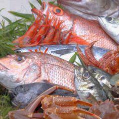 鮨 弁慶 海のおすすめポイント1