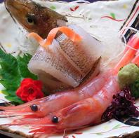 【お造り】新鮮な日本海の海の幸をどうぞ!