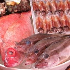 うんめ魚が食いてぇ 駅前漁港 本店のコース写真