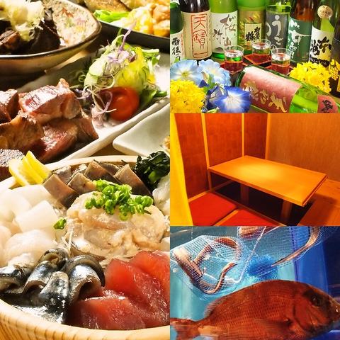 店内の水そうからあげる鮮度◎な瀬戸内魚介と広島の地酒を20種以上豊富にご用意♪