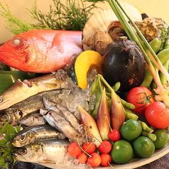 本日のおすすめ|季節の食材|料理人の業|タブレットオーダー