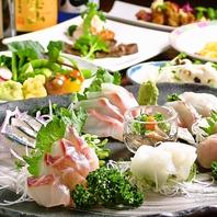 舞阪港、伊良湖港などの新鮮な魚介類