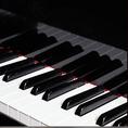マイク、グランドピアノ、プロジェクター、招待状作成、受付業務、当店所属ピアニストによる生演奏等、備品を手配させて頂きます。