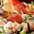 料理メニュー写真お造り 地魚だんだん盛り