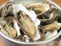 料理メニュー写真【いちおし】浦村漁港直送☆バケツ牡蠣