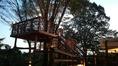 バルコニーにはのどかな田園風景を一望できるツリーハウスがあります