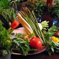 健康は元気な野菜から