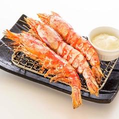 料理メニュー写真赤海老の塩焼き/目光(めひかり)丸干し/サーモンハラス焼き/さんま塩焼き