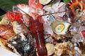 海桜 吹田 江坂のおすすめ料理1