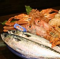 魚は地物、朝採れ鮮魚を使用!