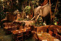 象のほかにも・・・