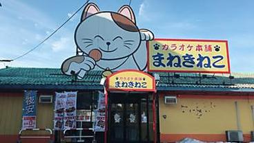 カラオケ本舗 まねきねこ 上田秋和店の雰囲気1