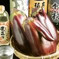 【日本一うまい茄子★(愛知)大トロ茄子(天狗なす)】戦前から奥三河津具地域を中心に栽培されていたナス★皮が薄くきめが細やかで糖度が高く水分が多い!!大きさはなんと通常のなすの約5~10倍!!その他水ナスや天津丸茄子など、珍しい食材も取り揃えております。