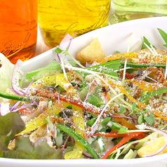 カラフルシーザーサラダ(18種の野菜達)