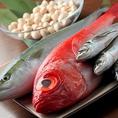 【産地直送鮮魚】五島列島・築地場内から鮮度のいい・市場では出回らない珍しいお魚も届けられてきます!