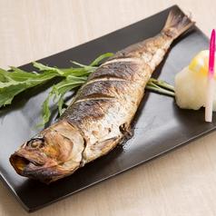 料理メニュー写真千葉県産特大イワシの丸干し