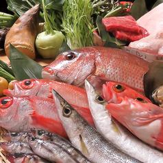 遠州の恵みと、魚介料理 倭 やまとの写真
