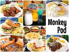 MonkeyPodの写真