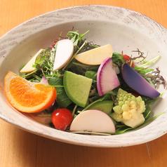 旬野菜の彩サラダ