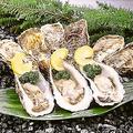 料理メニュー写真厚岸直送 殻牡蠣