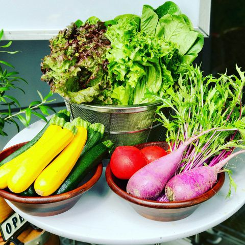 土づくりからこだわった新鮮で安心な野菜をはじめ、人に優しい素材を使用した料理をご提供しています。野菜をたっぷり使った料理はどれも絶品!優しい素材が生み出す、飽きのこない味をワイン片手にお楽しみ下さい♪